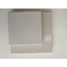 优质耐酸碱瓷砖中冠耐酸砖大器晚成不悔初衷