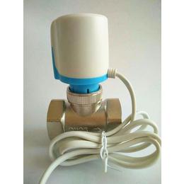 温控阀门DN25 电热温控阀 电热执行器