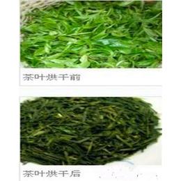 供应尚品牌茶叶烘烤箱是价格 茶叶烘烤箱厂家