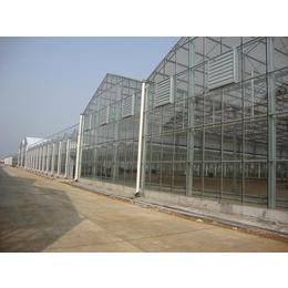 建温室大棚就找奥农苑农业科技
