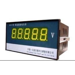 DL-JYV型绝缘监测仪
