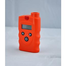 化工厂油气贮藏场所便携式油气气体泄漏检测仪