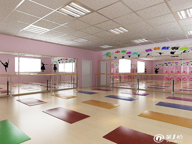 舞蹈教室专业建设 中小学舞蹈教室