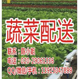 萝岗蔬菜配送-鼎魁农产品