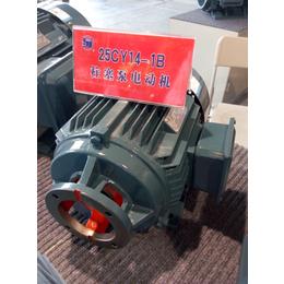 江苏双菊CY14-1D液压柱塞泵电机长期供应