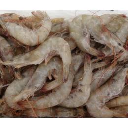 供应厂家直销2016冷冻虾批发供应商
