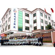 东莞市坚成电子科技有限公司