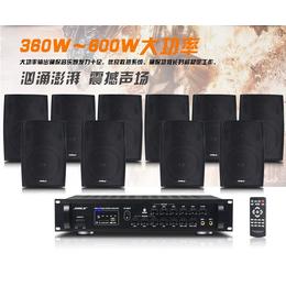 新款狮乐专业木制会议室音响设备