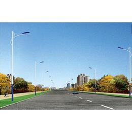 四川路灯生产厂家市电路灯道路照明工程城市道路灯新炎光