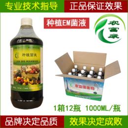 芽菜种植专用的生物菌农富康种植em菌种菌液
