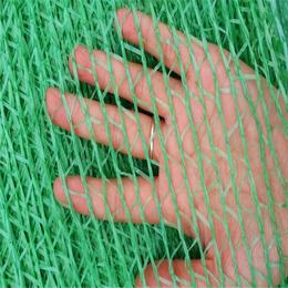 盖土网绿色盖土网黑色盖土网两针盖土网厂家