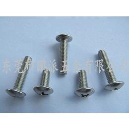 厂家直销 蘑菇头机器螺丝 大扁头十字不锈钢钢机柜专用螺丝