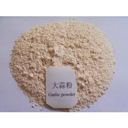 大蒜粉 调味香辛料 顶能食品