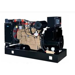 供应160kw康明斯天然气发电机组 实力工厂 品质保证