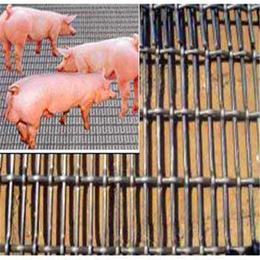 轧花养殖网养猪轧花网镀锌轧花网生产厂家