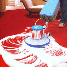 企业单位 酒店宾馆 地毯保洁保洁护理
