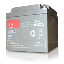 山特城堡蓄电池C12-26 UPS电源后备电池组