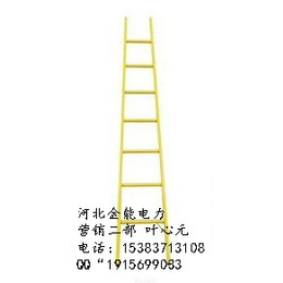 四川省资阳市供应通用方管绝缘单梯金能厂家直供量大价优