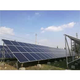 烟台农村光伏电站系统,金尚新能源(在线咨询),光伏电站
