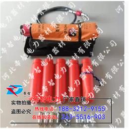 DZ-专业救生抛投器生产厂家