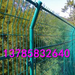 动物园防护护栏网  安徽省护栏网批发价格  哪里生产铁丝网