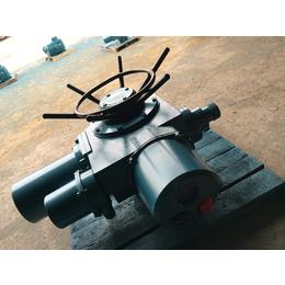 多回转Z20-24T DZW20-24T调节型执行器