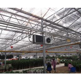 育苗智能温室,合肥智能温室,安徽农友(查看)