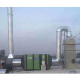 衢州废气处理qy8千亿国际、涂装废气处理qy8千亿国际、塞纳瑞克环保(优质商家)