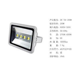 厂家批发新款聚光款投光灯220V 晶元芯片