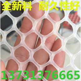 3毫米小孔塑料网 水产养殖塑料网 无毒无味纯新料 使用年限长