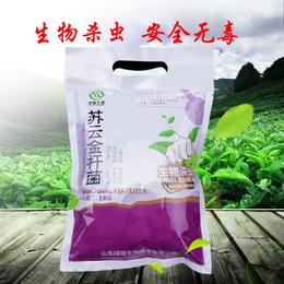 厂家直销山东绿陇微生物杀虫剂安全无毒