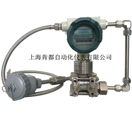 多参量变送器 多参数变送器 差压流量变送器 温压补偿