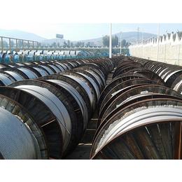JL G1A-240 30钢芯铝绞线厂家供应