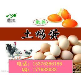供应能增加蛋壳厚度提高蛋壳品质的蛋禽饲料添加剂