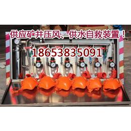 ZYJ矿井压风自救装置厂家直销 压风供水自救装置供应