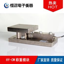 上海称重模块 专业生产高精度称重模块传感器厂家