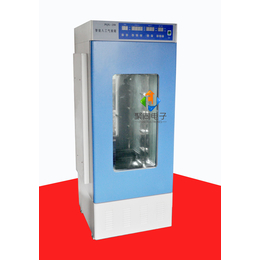 安徽厂家人工气候箱PRX-250C