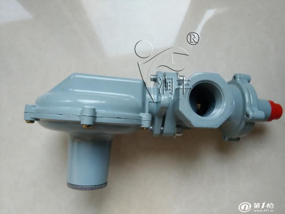 供应rtz20燃气调压器带切断热水器减压阀煤气阀图片