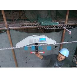 OEM幕墙拉索张力测量仪SL-30T吊索桥张力仪