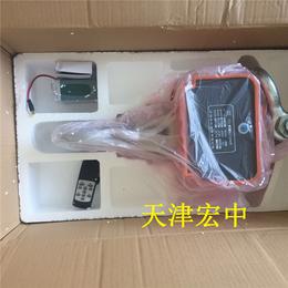 西藏那曲2000kg****行车称直视电子秤