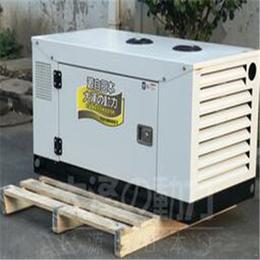 15千瓦永磁柴油发电机组价格