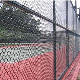 体育场地   护栏护网