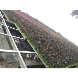 日本高次团粒SF绿化技术专用土壤团粒剂