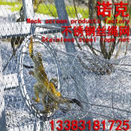 诺克 钢丝绳网 猴子围网 猴子笼舍 猩猩围网 猿类围网