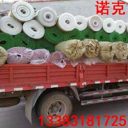 诺克 塑料平网 小鸡养殖网 宠物漏粪网 养鸡脚垫网