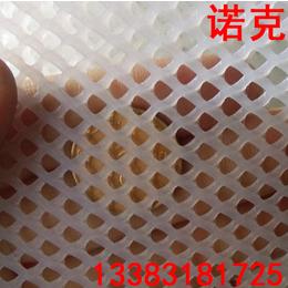 诺克 塑料平网 雏鸡养殖网 养蜂网 小孔塑料网