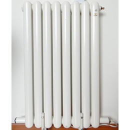家用取暖器 真空超导电暖器1100W