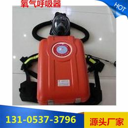 供囊式氧气呼吸器 HYZ4正压式价格源头厂家