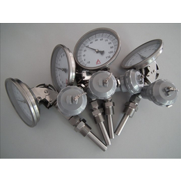 WSS-485双金属温度计