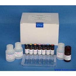 磁珠偶联抗体蛋白试剂盒